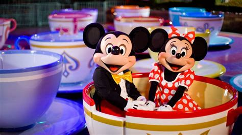 Disney Fan Proposes to Minnie Mouse and Mickey's Not