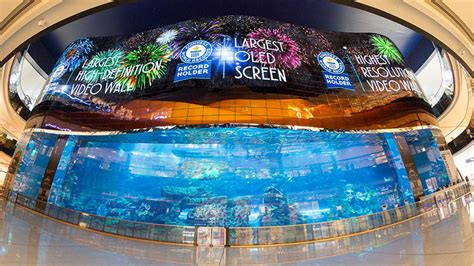 World's largest OLED screen unveiled at Dubai Mall