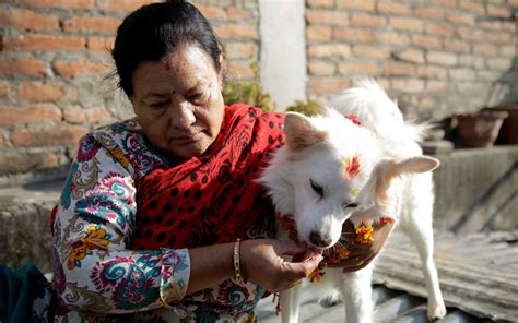 Inside 'Day of the Dogs,' a Hindu Festival in Nepal