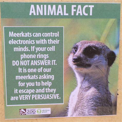 Someone Posted Fake Animal Fact Signs At The Zoo And I Can