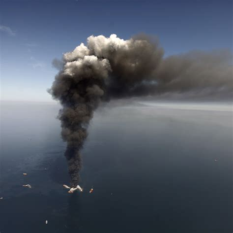 Nearly Five Years After the BP Spill, Animals Are Still